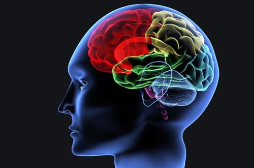 تقویت حافظه | مسیر رشد