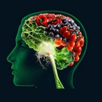 نقش تغذیه در تقویت حافظه   مسیر رشد