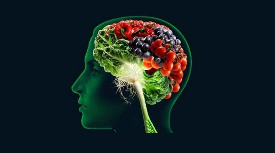نقش تغذیه در تقویت حافظه | مسیر رشد